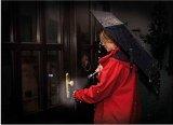 3in1 Mini-Regenschirm mit LED-Licht und Alarm-Blinkleuchte